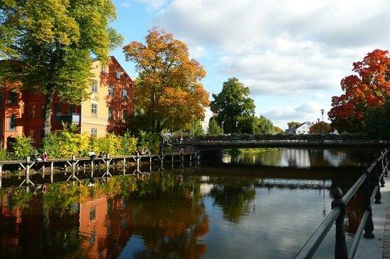autumn-in-uppsala